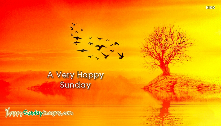 Happy Sunday Nature Images