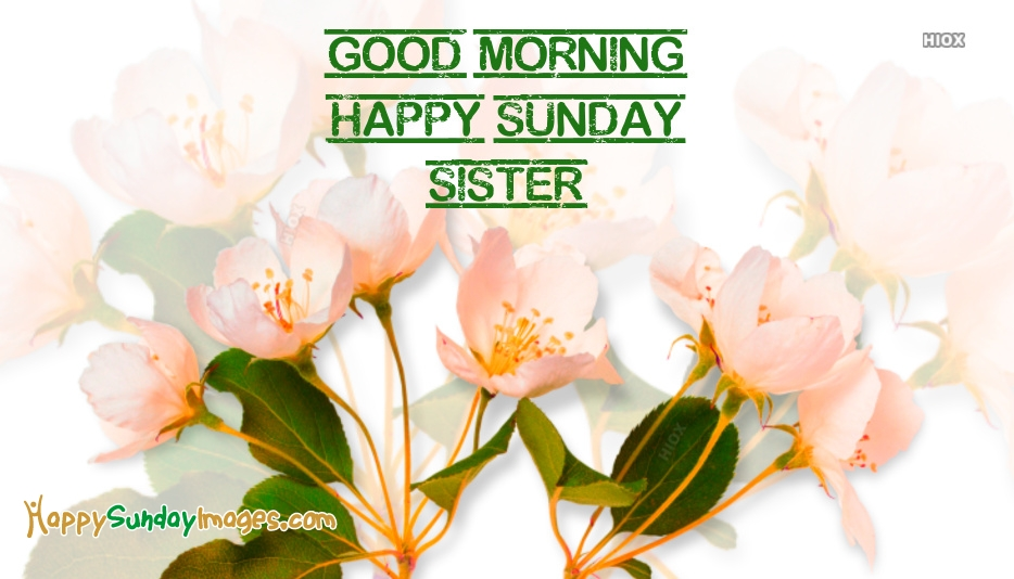 Good Morning Sunday Sister At Happysundayimagescom