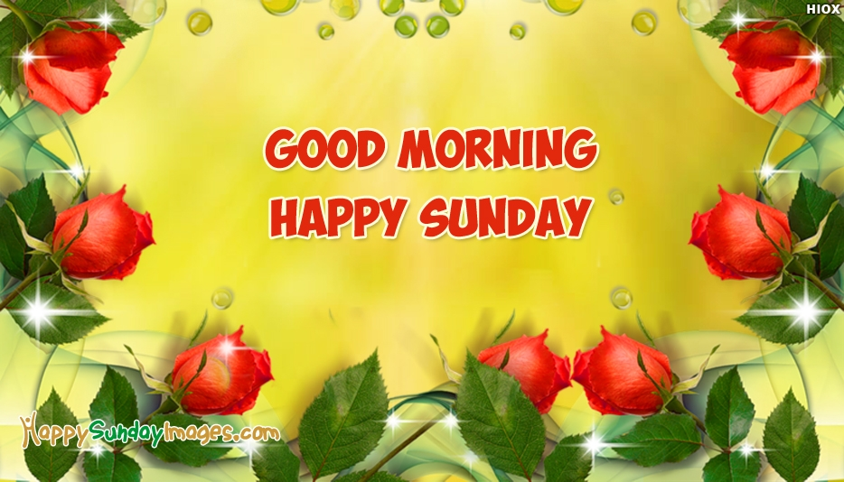 Good Morning Sunday Rose : Happy sunday images with red roses