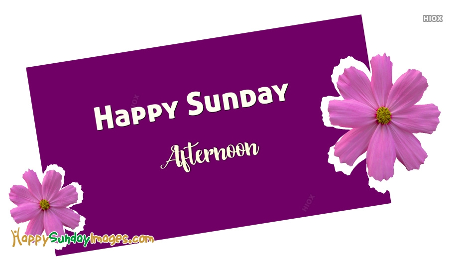 Happy Sunday Afternoon Greetings