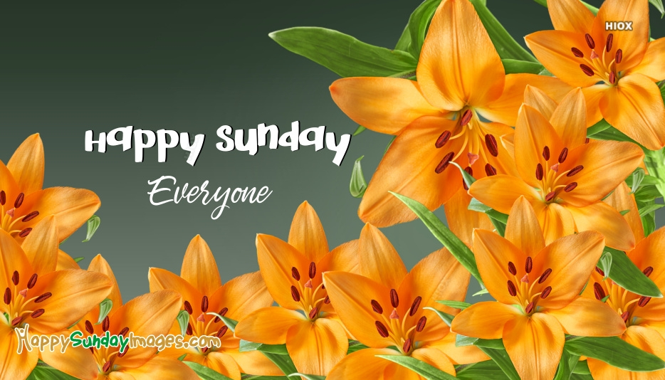 Happy Sunday Everyone Message