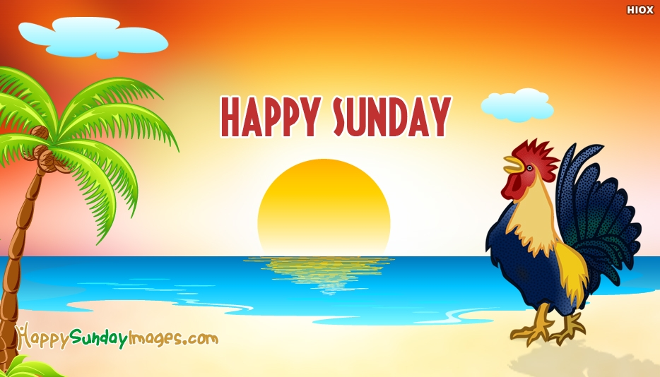 Happy Sunday Birds Images