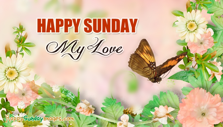 Good Morning And Happy Sunday Love Message : Happy sunday my love happysundayimages