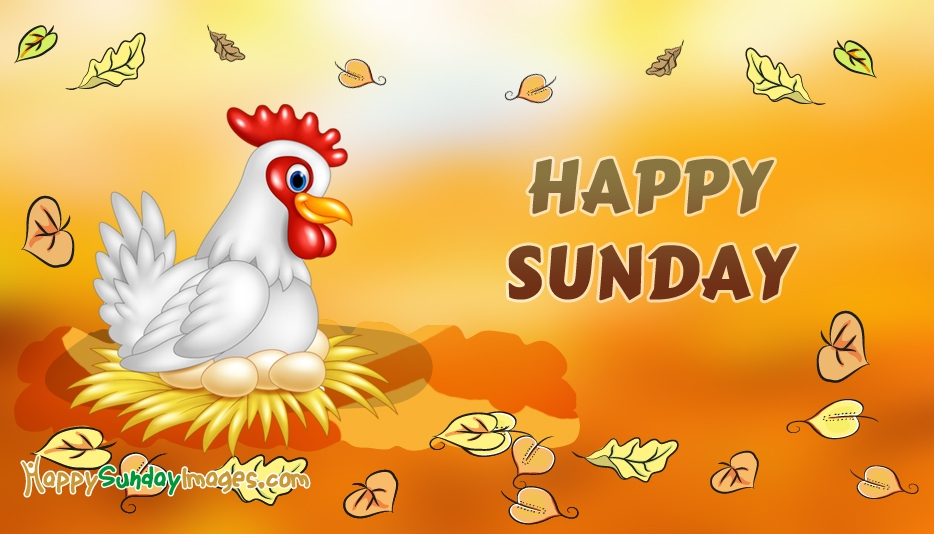 Happy Sunday New Hen Images