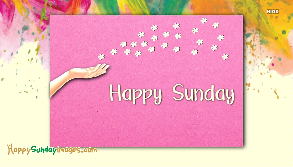 Happy Colourful Sunday Images