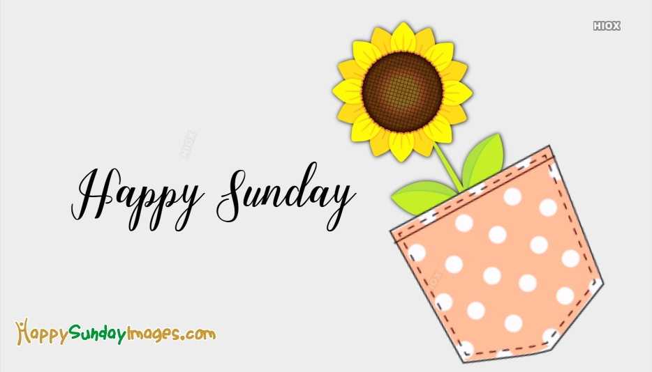 Happy Sunday Good Morning Photos