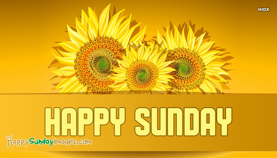 Happy Sunday Images for Sunflower