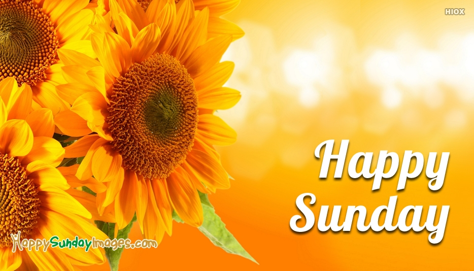 Images Of Happy Sunday Hd