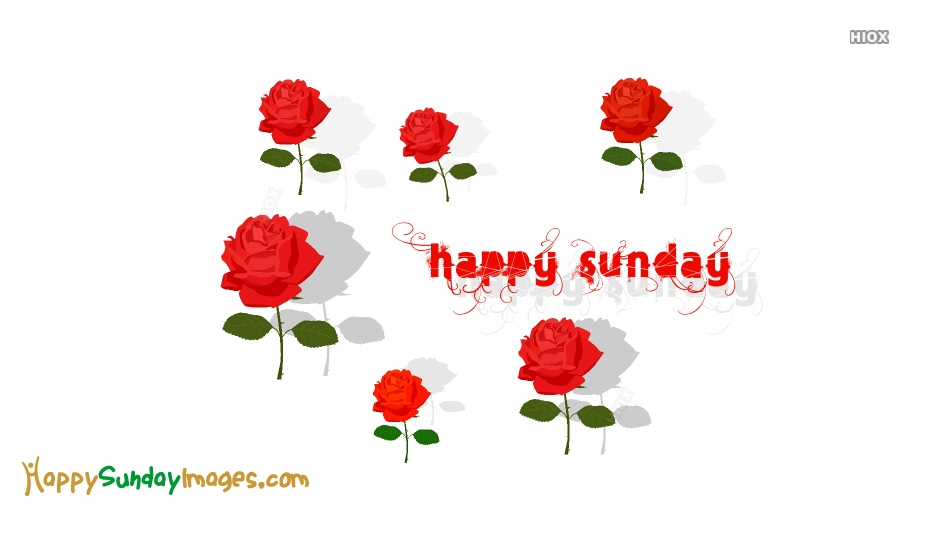 Happy Sunday Wallpaper With Roses