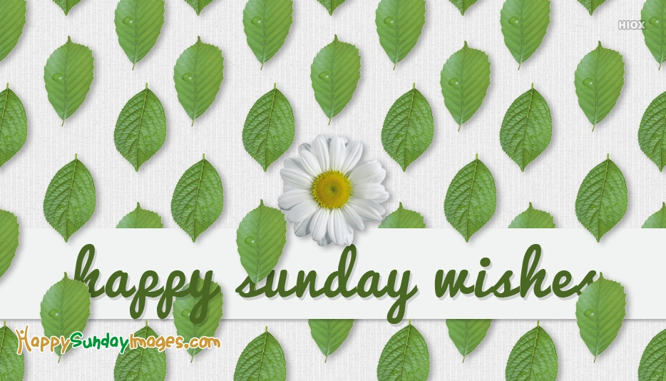 Happy Sunday Wishes Images, Quotes
