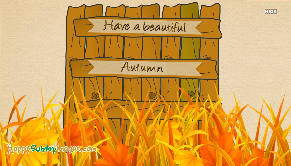 Have A Beautiful Autumn