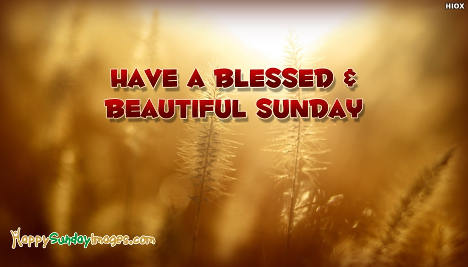 Have A Blessed and Beautiful Sunday - Happy Sunday Images for Colleagues