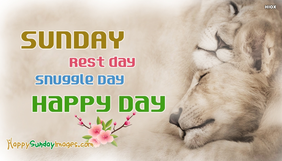 Sunday. Rest Day. Snuggle Day. Happy Day