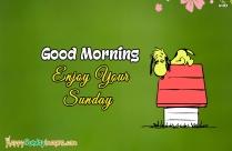 Happy Sunday Morning Everyone