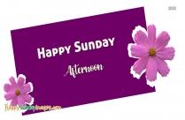 Happy Sunday Afternoon