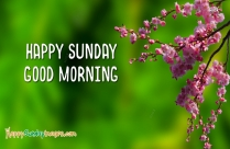 Happy Sunday And Good Morning Images
