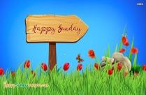 Happy Sunday Ecard
