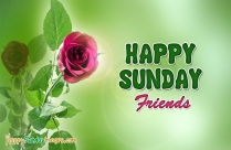 Happy Sunday Friends