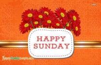Happy Sunday All
