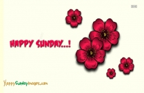 Happy Sunday Have A Nice Day
