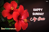 Happy Sunday My Dear