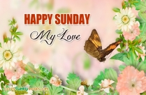 Happy Sunday My Love