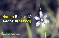Have A Blessed And Beautiful Sunday