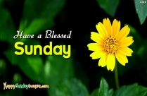 Have A Blessed Sunday